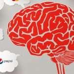 neuromkt-sanvalentin