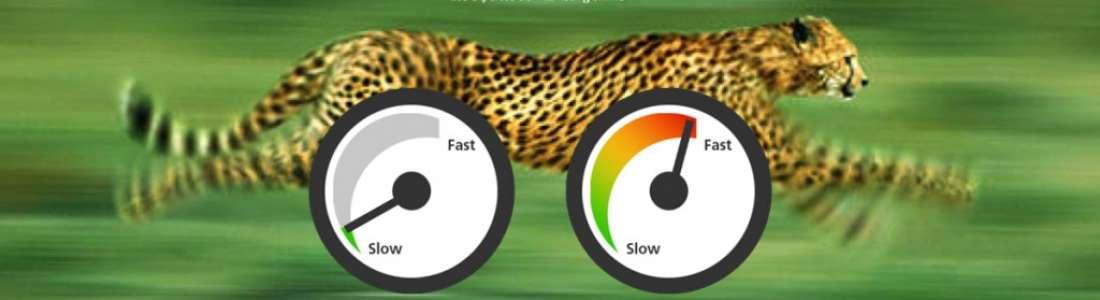 ¿Éxito o fracaso de tu página web? Velocidad de carga: un factor determinante.