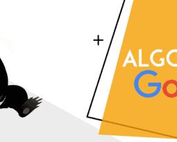 Panda, el algoritmo de Google contra el contenido duplicado