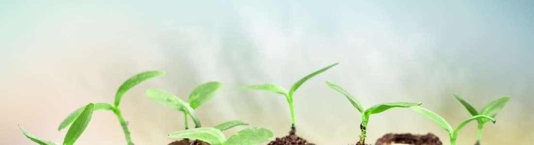 Las 6 inversiones que debes de hacer en tu negocio!